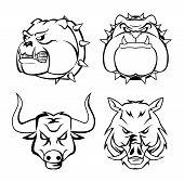 bull dog, wild boar and bull heads