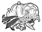 Vegetables Food Group Illustration