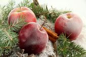 Red apples with fir branches on bark in snow close up