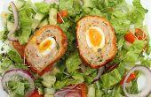 Scotch Egg Salad