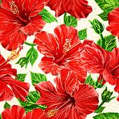 Seamless fhibiscus flowers pattern. Vector, EPS10