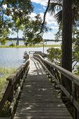 waterfront wooded property with dock, vertical shot