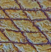 image of phyllo dough  - baklava closeup traditional middle east desert with nuts and honey syrup  - JPG