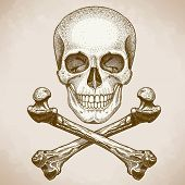 picture of skull bones  - vector engraving illustration of skull and crossbones on white background - JPG