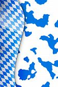 octoberfest pattern banner illustration on cowhide