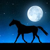 Silhouette of a horse in the night sky with the moon.