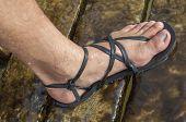 stock photo of wet feet  - Closeup of man - JPG