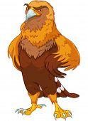 Illustration of beautiful golden eagle