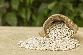 White Beans In Hessian Bag With Background Defocus