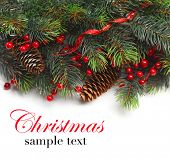 stock photo of fir  - Christmas background - JPG