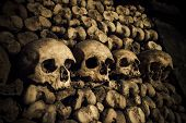picture of catacombs  - Highly detailed image of Skulls and bones in Paris Catacombs - JPG