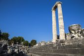 Temple Of Apollo In Didyma Antique City Didim Turkey 2014