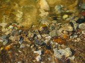 Texture Of Stones Under Water