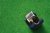 businessman sitting on the green meadow with laptop, typing and looking at growing diagram. view fro