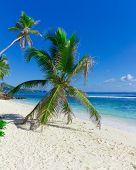 Seascape Sunshine Beauty