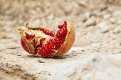 Ripe Juicy Pomegranate Have Broken