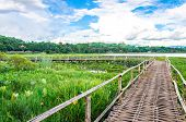 The wooden bridge in blue sky green lagoon