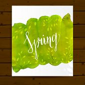Spring flyer layout with green paint stain and leaves. Nature background card on wood. Vector design