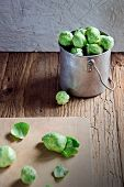 Fresh green Brussels sprouts