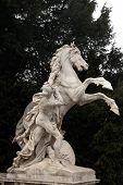Horse Statue, Hofburg Complex, Vienna, Austria