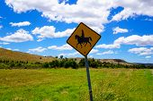 Horse riding sign in the country on a sunny day with blue sky.