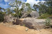 Large brown rocks in John Forrest National Park