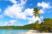 Beautiful Magens Bay beach in the morning on St Thomas Island US VI.