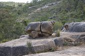 John Forrest National Park rocky landscape