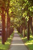 sidewalk in the city