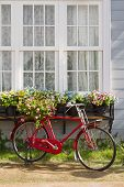 Red Bicycle In Front Of Retro White Window And Flower Pot