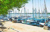 Feluccas In Port