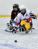 Two Players Playing Sledge Hockey