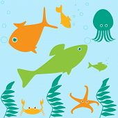 Marine Life Scene