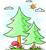 Fir-trees and mushrooms