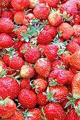 Juicy fresh strawberries