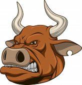 Ferocious bull