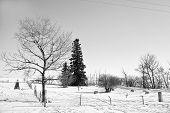 Small rural graveyard