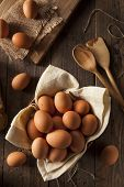 Raw Organic Brown Eggs