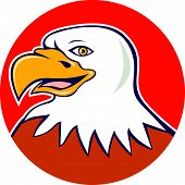 American Bald Eagle Head Smiling Circle Cartoon