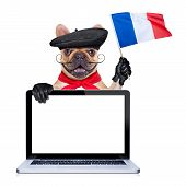 pic of french beret  - french bulldog with beret hat waving flag of france behind laptop pc computer screen and keyboard - JPG