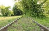 stock photo of train track  - Old and unused railroad tracks in middle of forest railway tracks without train - JPG