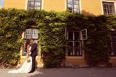 picture of ivy  - Bride and groom embracing in front of a beautiful house covered with ivy