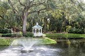 stock photo of fountain grass  - A white gazebo by an old oak tree draped in spanish moss with a fountain and lake - JPG