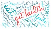 picture of enzyme  - Gut health word cloud on a white background - JPG