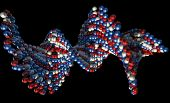picture of microscopic  - A microscopic view of a sequenced pattern of DNA style red blue and white atoms on an isolated background - JPG