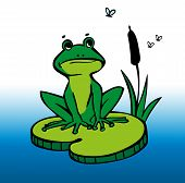 image of mosquito  - Illustration of a green frog sitting on a lily pad with reeds and mosquitoes - JPG
