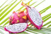 foto of dragon fruit  - Dragon fruit on palm leaf against white background - JPG