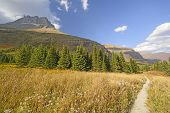 image of fall day  - Mountain Meadow on a Sunny Fall Day in the Swiftcurrent Valley of Glacier National Park in Montana - JPG