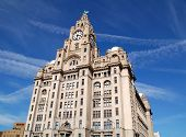 Liverpool Royal Liver Building With Liver Bird