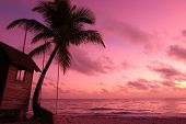 stock photo of beach sunset  - Beautiful caribbean beach sunset in Dominican Republic - JPG
